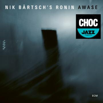 Cover Awase Nik Bärtschs Ronin