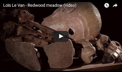 loislevan redwoodmeadow